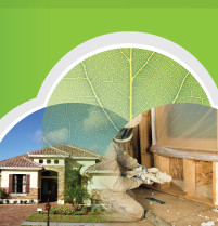 synergy spray foam prices